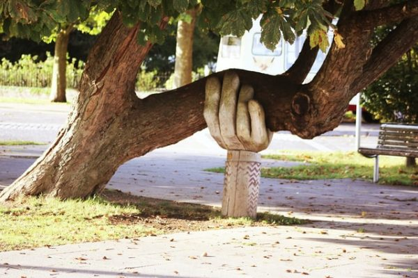 a wooden hand statue holding up a tree branch
